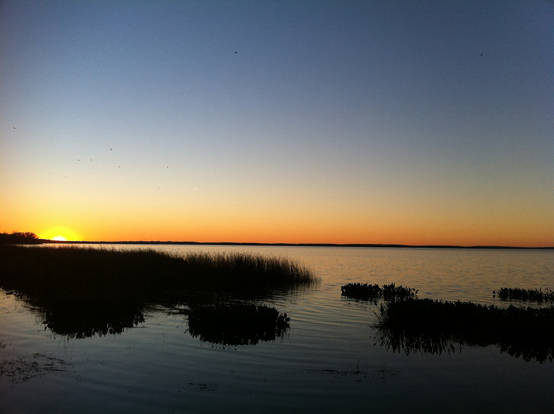 January 28, 2011: I started this week's photo with a sunrise, so I'm ending it with a sunset. Here's a photo taken last week from Lake Apopka.