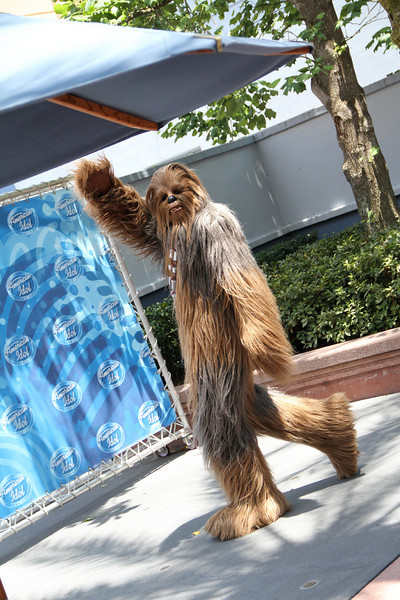 May 25, 2010: Since tonight is the last performance show of American Idol (Go Crystal!) and Star Wars Weekends returns this Friday, I thought I'd send out this gem. Here's Chewbacca going to audition for the American Idol Experience.