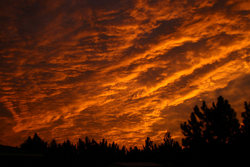 December 1, 2009: Continuing with photos from last week, here is a photo shot from my uncle's place in Georgia.  I was washing his trucks when I looked up to notice the sky like this.  I had to run and get my camera.