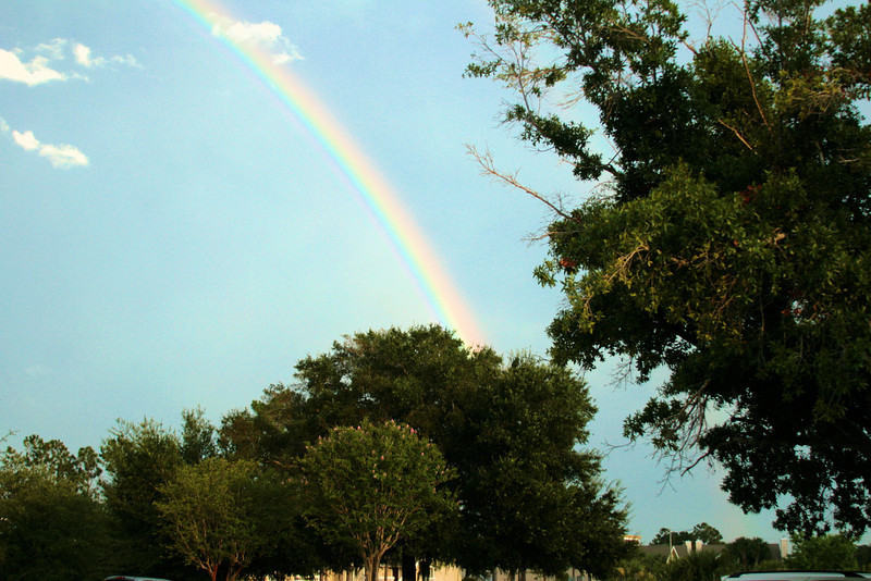 July 28, 2009:  On Saturday, I caught this rainbow while on my way to a bowling alley for a friend's birthday.  This was probably the most vibrant rainbow I have ever seen.  And, as is often in Central Florida, it was a double rainbow – but the second was a bit too faint to capture.