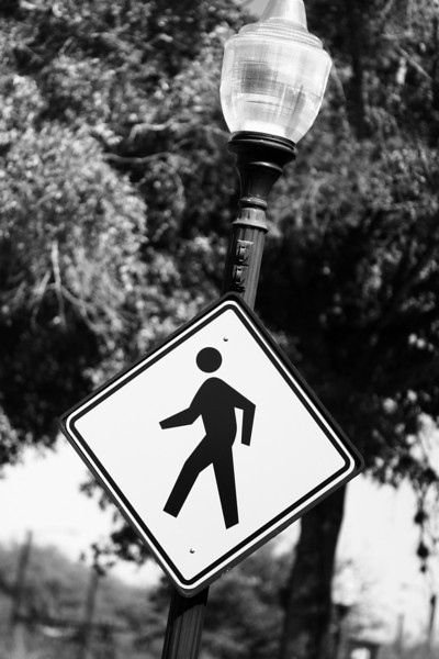 March 11, 2010: I snapped this photo of a pedestrian crossing sign while walking around in Winter Garden.