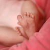 November 12, 2010: Here is another photo of baby Sydney – well, her foot at least –  from the other day.