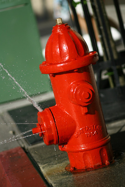 April 21, 2010: Here's a photo of a fire hydrant that I shot from the Streets of America at Disney's Hollywood Studios.