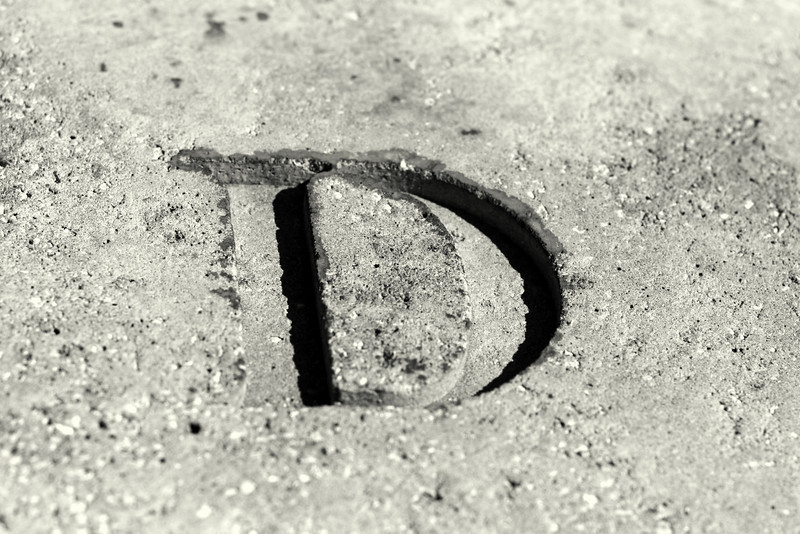 March 18, 2010: Today's Photo du Jour is brought to you by the letter D! I found this on the fountain in Winter Garden last week.