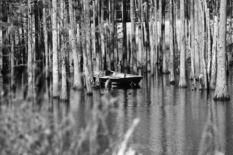 April 16, 2009:  Today I'm switching it up a bit with a black and white photo.  I found this abandoned boat amongst cypress trees in a pond back in the woods.