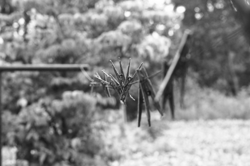 June 18, 2009:  Here's a photo of a clothes line in black & white.  This was taken at my grandparents' a few weeks ago.