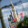 April 26, 2010: Today I kick off my Magic Kingdom week with one of my favorite photos of Cinderella's Castle. This was shot last weekend when friends were in town. I've been at Magic Kingdom a lot lately, as a guest and working Grad Nite. I'll be heading there again tomorrow when my grandmother goes for the first time!