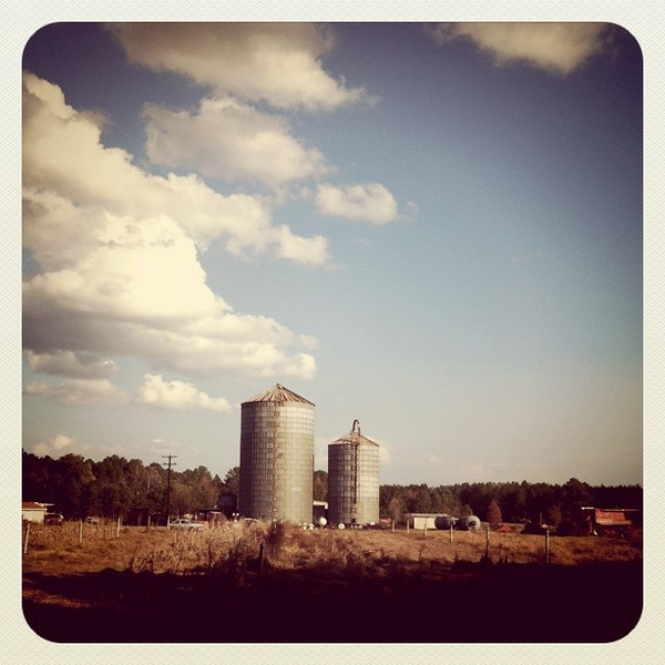 December 2, 2010: Here's another photo from my iPhone app Instagram. This is a farm in front of my Mom's house in Georgia. After I took this photo, I instantly fell in love with it!