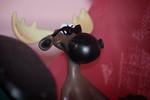 Caribou motard