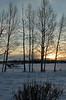 January 18, 2010.  Spenard Lake sunset