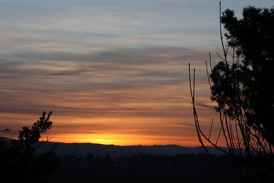 Jan 29: Sunrise from the same spot in my back yard as on Jan 25. Very different.