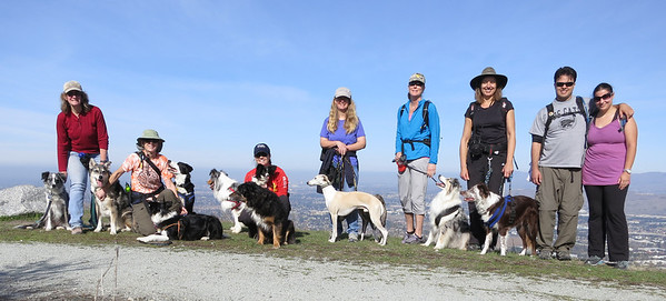 Jan 30: Friends and dogs atop Coyote Peak at Santa Teresa County Park. (Compact camera on a gorillapod using self-timer.)