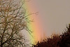 Jan 21: This rainbow was a quick capture as I ran outside between runs at a dog agility competition.