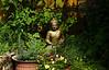 July 29, 2013.  Buddha's corner