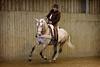 Horseguy1