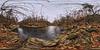 wiss-creek