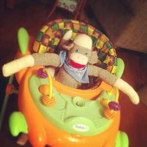 10-18-12. Sock Monkey likes to play in the walker too.