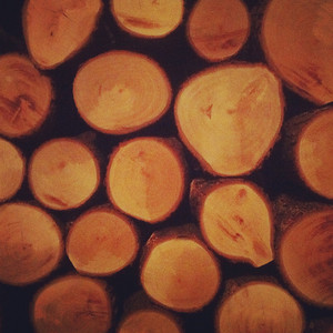 10-12-12.  Logs.  (very last-minute photo)