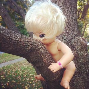 10-16-12.  Spooky tree climbing doll.