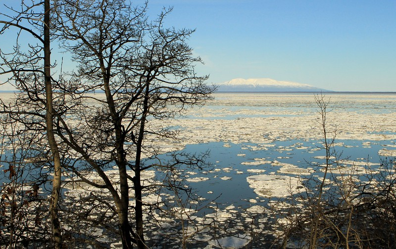 March 23, 2015.  Pan ice on Cook Inlet