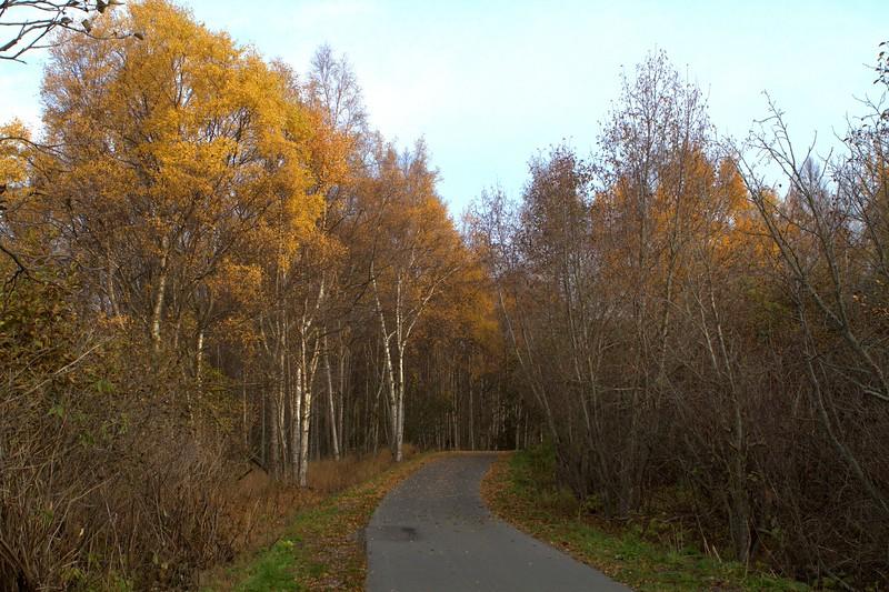 October 6, 2015.  Fall colors waning