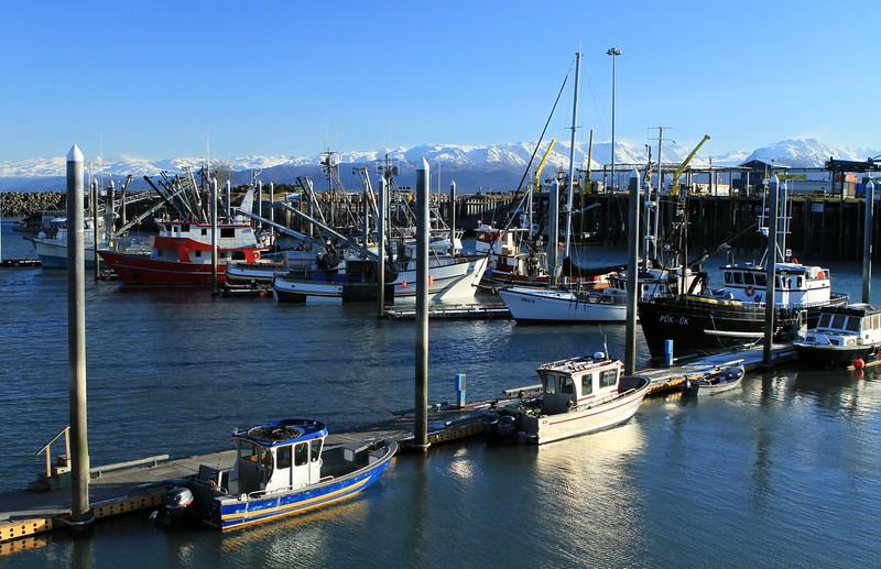 February 6, 2015.  Homer boat harbor