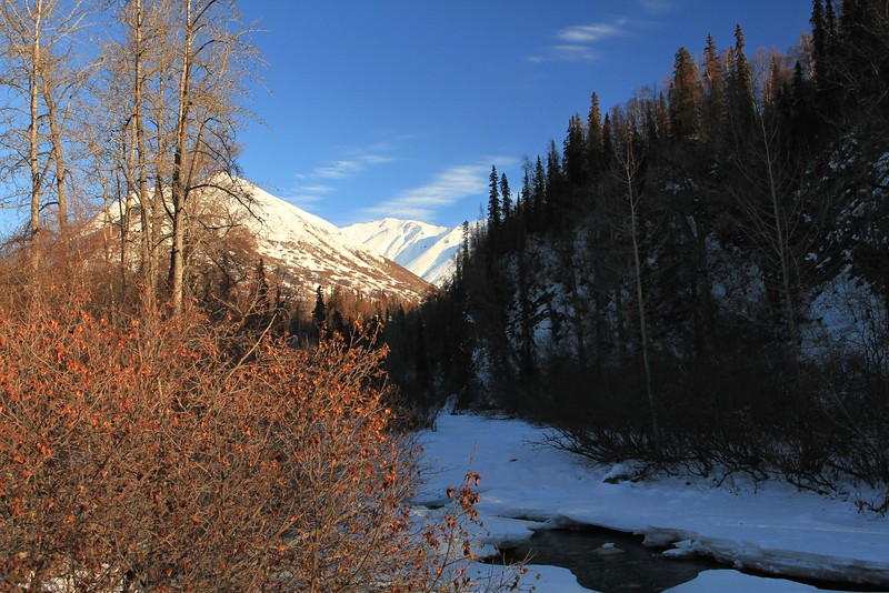 January 20, 2015.  Little Susitna River