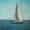 Photo-Art Dana Point Sailing Boat