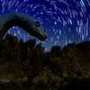 Photo-Art Dinosaurs - Stars