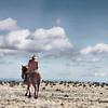 Photo-Art Cowboy