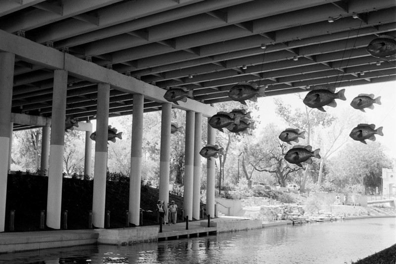 Riverwalk under I-35. The fishes are whimsical, no?<br /> Nikon FE - 50/1.8<br /> Fuji Neopan 100