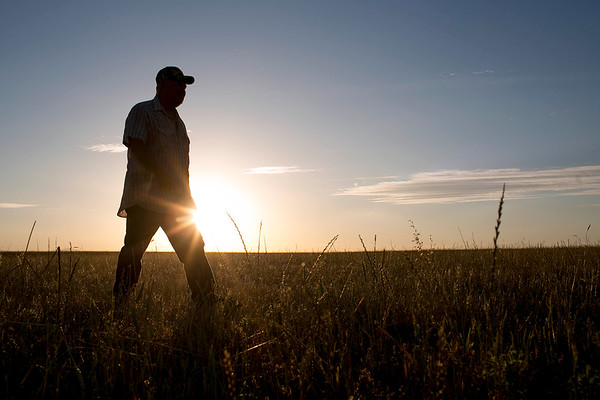 Jack Lapant is being sued by the Army Corps of Engineers for plowing a wheat field to grow wheat on land that he formerly owned in northern California.