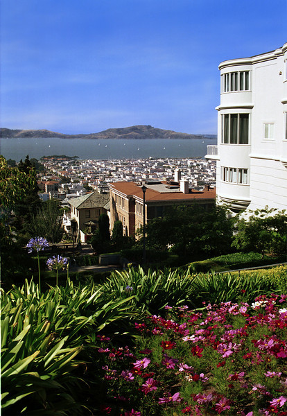 Surrealistic view of San Francisco bay from Pacific Heights.