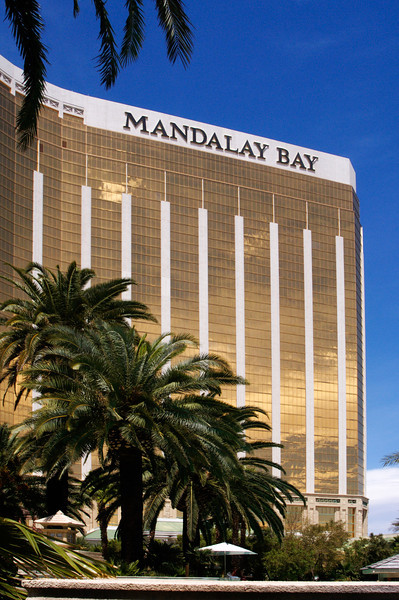 The Mandalay Bay Hotel glistens in the sunlight as palm trees wave in a light breeze.