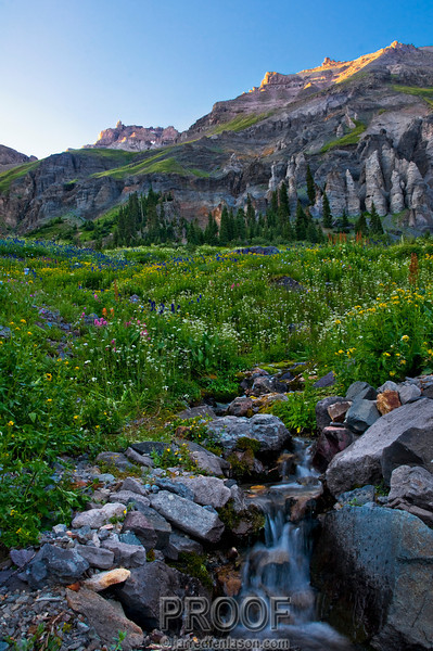 """Setting Sun in Yankee Boy Basin""<br /> <br /> Yankee Boy Basin, high in Colorado's San Juan Mountains, is one of the premier wildflower locations in the West.  The huge meadows of Columbine, Indian Paintbrush, daises, and bluebells surrounded by towering peaks is truly an inspiring location.  It is only accessible with a four wheel drive vehicle.  This photograph was taken as the sun was setting at f/16 for 1/2 second."