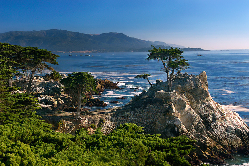 The lone cyprus, a 200 year old cyprus tree that overlooks the Pacific Ocean along Highway 1 near Monterey, CA, is the logo inspiration for the Pebble Beach golf course.