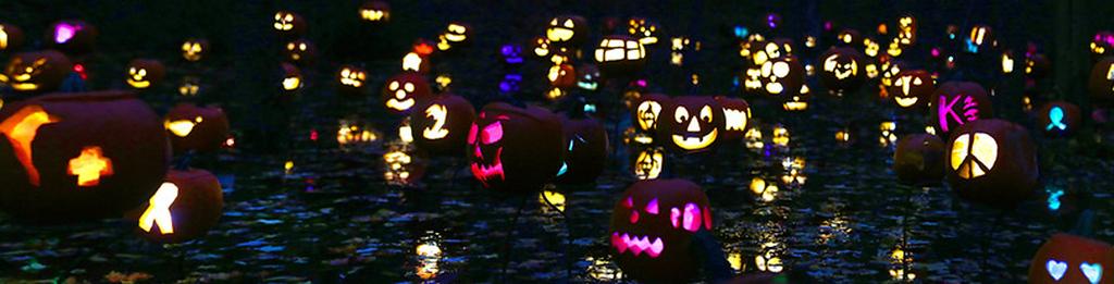 Carlisle Pumpkins