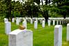Pebble on Arlington Gravestone