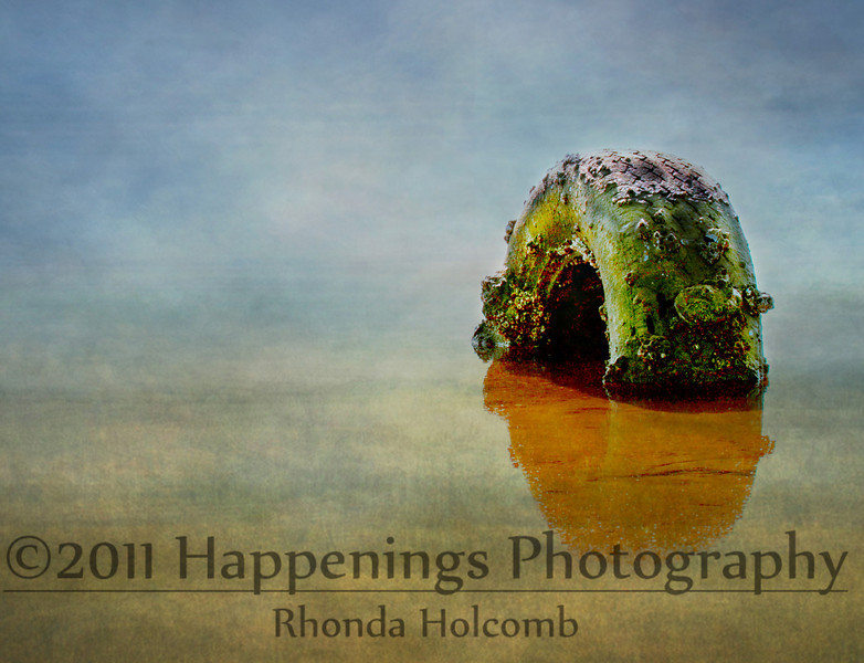 Stuck in the Mud by Rhonda Holcomb