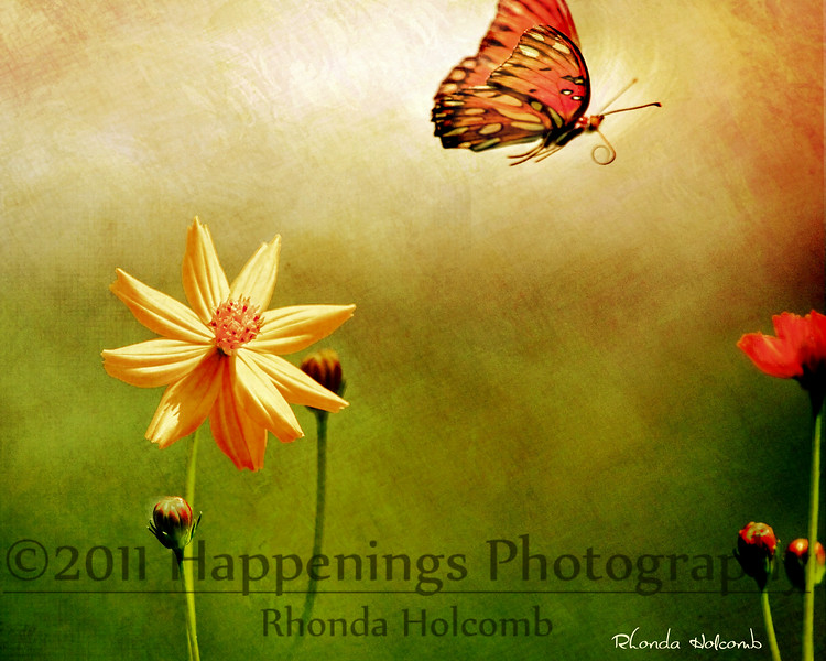 Onto The Next Cosmos by Rhonda Holcomb