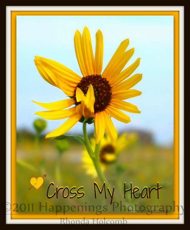 Cross My Heart by Rhonda Holcomb<br /> best at 8x10