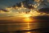 Fujairah Sunrise: On golden pond