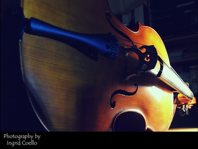 cello by ingrid coello