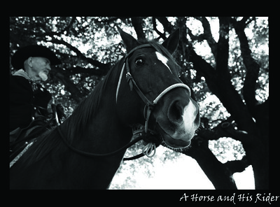 A Horse and His Rider (Need Two Copies)