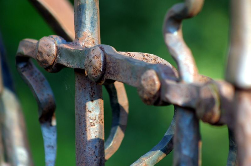 The entrance to the herb garden is guarded by an old gate made from antique garden tools.  Look closely, and you can see a little cobweb.  I also like the detail of the rust, and the almost 3-D effect of the depth of field focus.