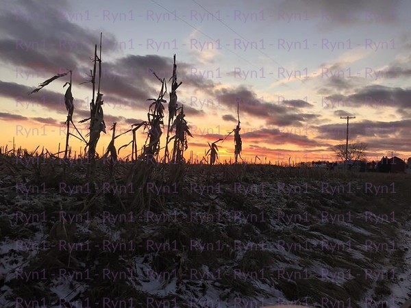 Sunset Sentinels