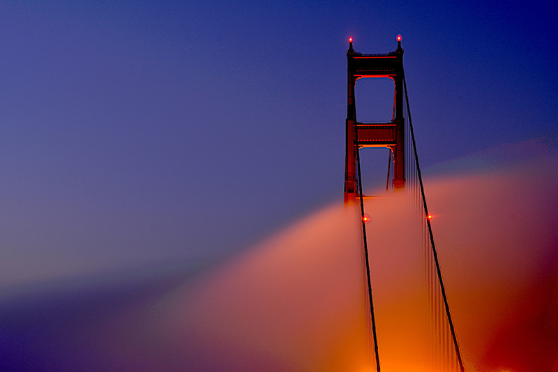 "<a href=""http://www.sfphotosafari.com/"">SF Photo Safari</a>"