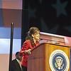 A fake Sarah Palin