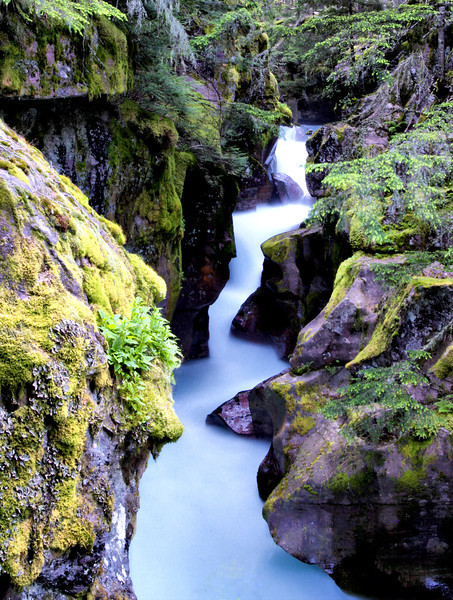 Avalanche Creek Falls, Glacier National Park