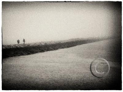 Harbor Fog